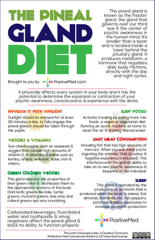 File:Pineal-gland-dietWEB.jpg