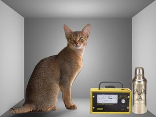 File:Schrödinger cat.png