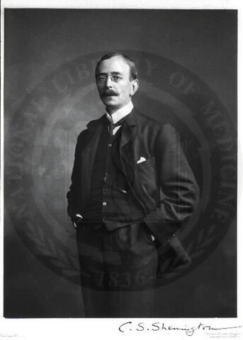 File:Charles Scott Sherrington.jpg