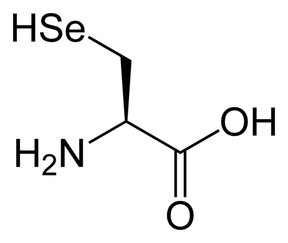 File:L-selenocysteine-2D-skeletal.png