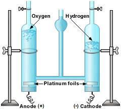 File:Hoffman voltameter.jpg