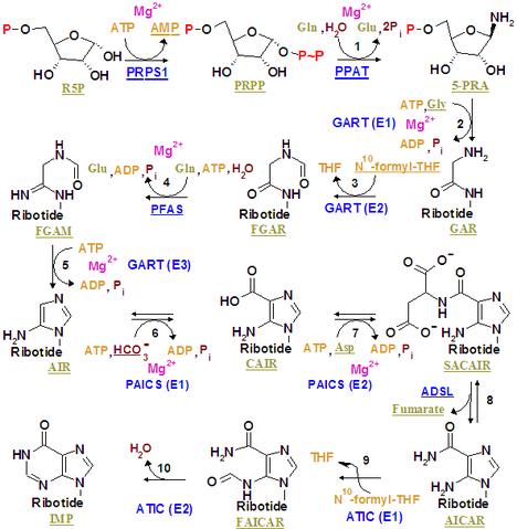 File:Nucleotides syn1.png