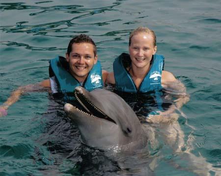 File:OceanWorld DolphinPhoto.jpg