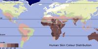 Human skin color
