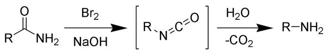 File:Hofmann Rearrangement Scheme.png