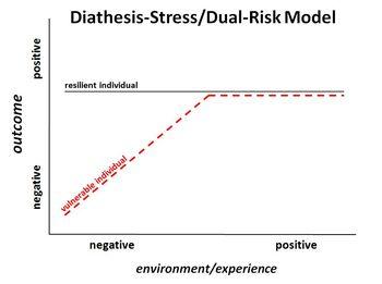 Diathesisstressdualriskmodel