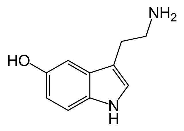 File:Serotonin-skeletal.png