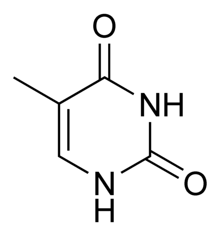 File:Thymine chemical structure.png