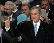 Bush-horns