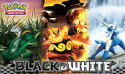 Pokemon-TCG-BW