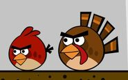 87d8ry birds thanksgiving short by paulh18-d4dj9xp