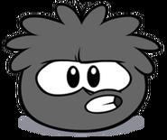 Black Puffle (29)