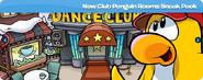 New-club-penguin-rooms-sneak-peek