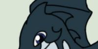Kosatka Seafin