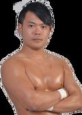 Tatsuhiko Yoshino