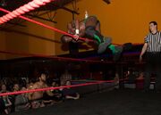 Rich Swann over the rope