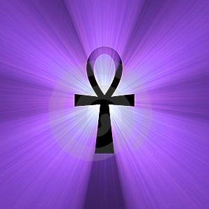 File:Life purple.jpg