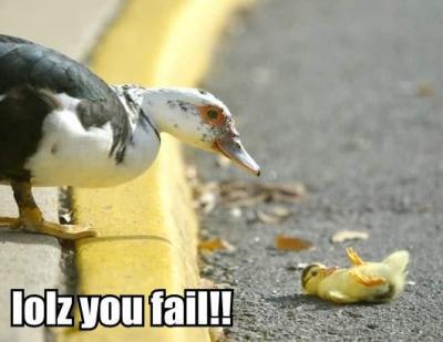 File:Duck Failure.jpg