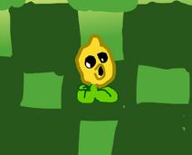 LemonPea