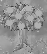 Imitater Apple Tree