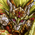 Luke Grapenil (God Blade) Icon