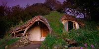 DARP Homes