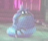 Blue Ameboid