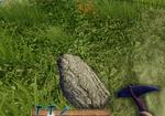 Tit pickaxe