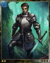 Camelot Guard