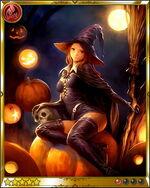 Saccharine Witch