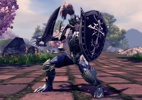 File:RaiderZ Defender.jpg