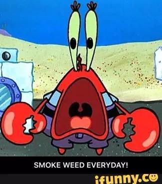File:Mr. Krabs smoke weed everyday meme.jpeg