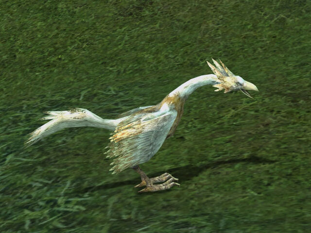 File:Nimble Little Rooster.jpg