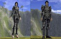 Demonhide Armor