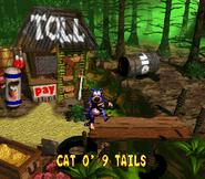 CatoNineTails Ending - Donkey Kong Country 2