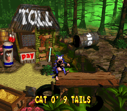 File:CatoNineTails Ending - Donkey Kong Country 2.png