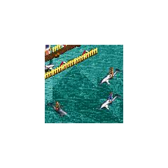 Dolphin Ride<br />(<a href=