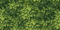 Leaf Floor