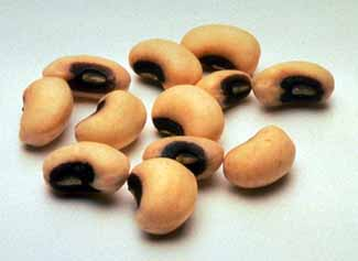 File:Black-EyedPeas.jpg