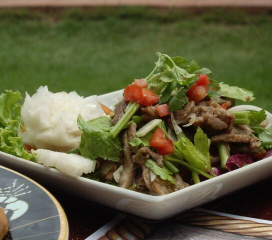 File:Thai Beef Salad 11.jpg
