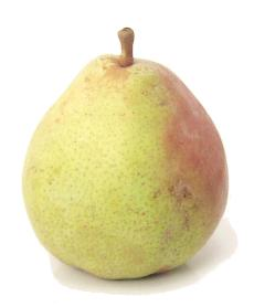 File:ComicePear.jpg