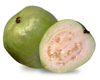 File:Guava.jpg