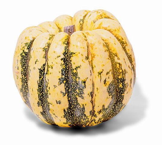 File:Gourd.jpg