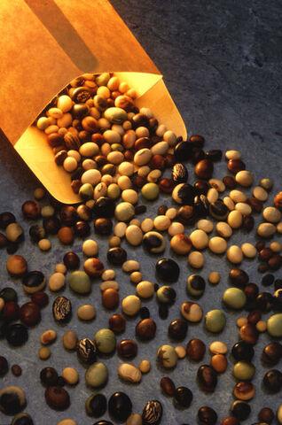 File:397px-Soybeanvarieties.jpg