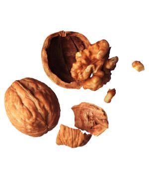 File:Walnuts 300.jpg