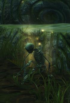 Resting the bones