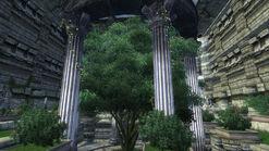 Arboretum Interior (1)
