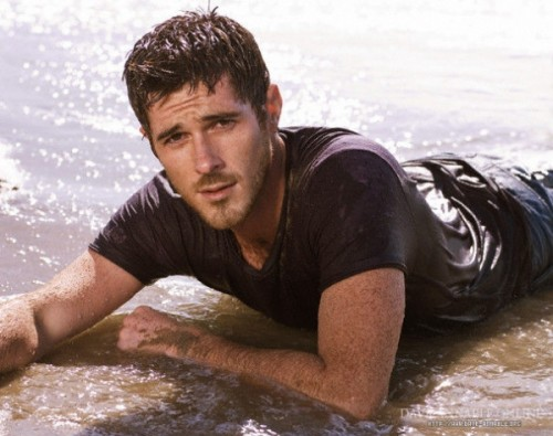 File:600full-dave-annable-1-500x395.jpg