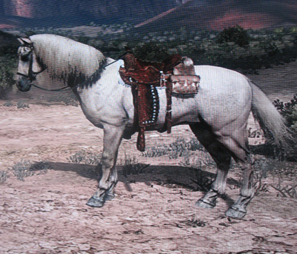 File:White Stallion.jpg