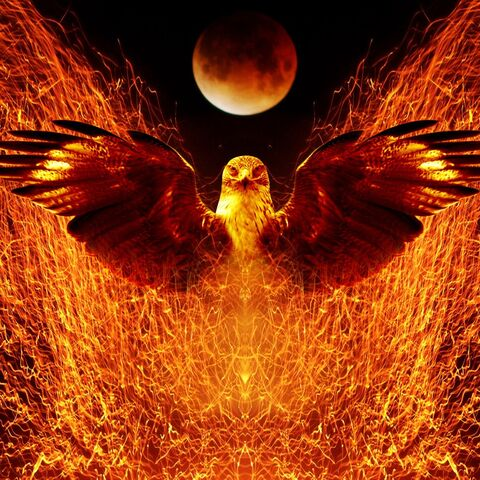 File:Phoenix.2.jpg